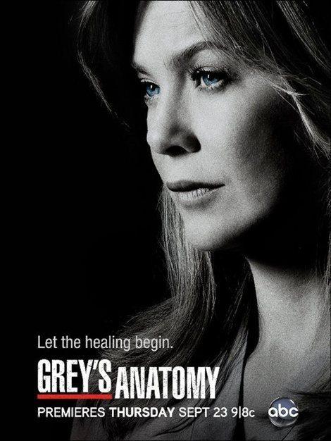 Vale a pena assistir: Grey\'s Anatomy - Niina Secrets