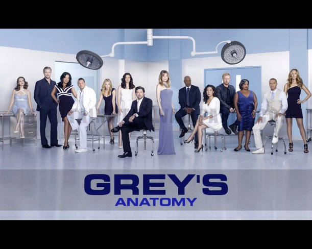 Vale a pena assistir: Grey's Anatomy - Niina Secrets