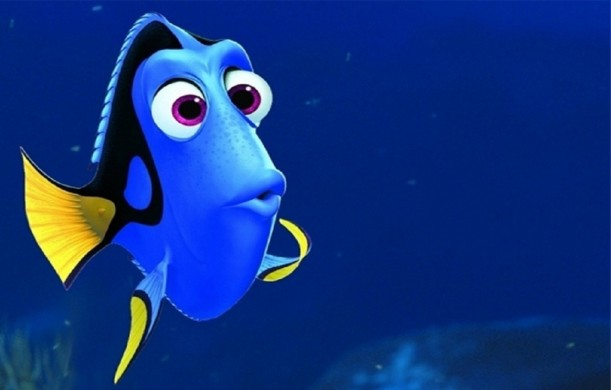 15.1.2016_finding dory